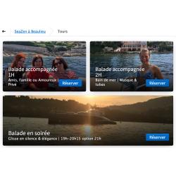 Widget integrated into your website