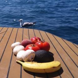 Grande table pour anniversaire en bateau